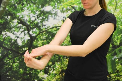 Estiramiento de los músculos extensores del antebrazo