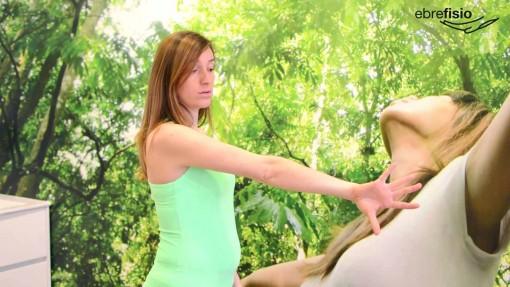 Brazo y codo estirado en rotación interna